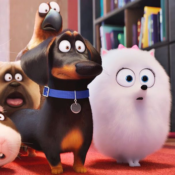 Secret Life of Pets - Bafta Kids Vote 2016
